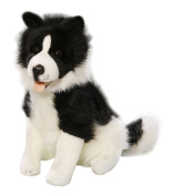 Toizz 33.56091 37 cm BIColini Sitting Border Collie Dog Plush Toy