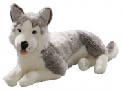 Toizz 33.56016 60 cm BIColini Lying Husky Dog Plush Toy