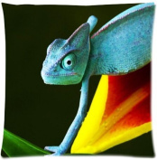 Square Decorative Throw Pillow Case Cushion Cover Reptile gecko lizard 46cm x 46cm