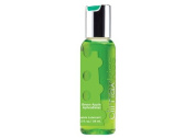 Climax Kiss 60ml Green Apple (Package Of 6) Half Case by Beststores