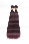 Angel Beauty Hair Cheep 99j hair weave brazilian virgin hair straight 2pcs/LOT 99j brazilian hair evcentions 25cm - 70cm