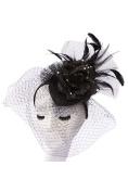 Womens Fashion Feathered Fascinator w/ Veil