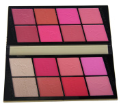 JPNK Professional Brillian 16 Colours Makeup Cosmetic Blush Blusher Palette