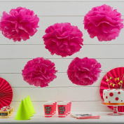 Sorive® Pink Tissue Paper Pom Poms 5 Pack Wedding & Party Decorations