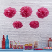 Sorive® Hot Pink Tissue Paper Pom Poms 5 Pack Wedding & Party Decorations - Summer Fruits