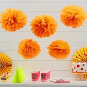 Sorive® Orange Tissue Paper Pom Poms 5 Pack Wedding & Party Decorations