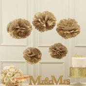 Sorive® Tan Tissue Paper Pom Poms Party & Wedding Decorations - Pastel Perfection
