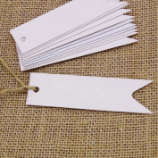 G2PLUS® 100 PCS Paper Hang Tags with String Craft Gift Tags Mini Size 7 cm x 2 cm Wedding Favour Tags with 30 Metres Jute Twine