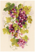Grapevine Counted Cross Stitch Kit-21cm x 30cm 14 Count