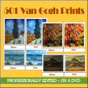 501 VAN GOGH Paintings - PROFESSIONALLY EDITED - On A DVD
