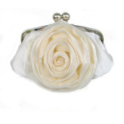 Dilize Women's Special Occasion Wedding Flower Silk Clutch Hand Bag
