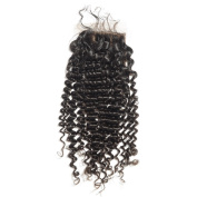 BEFA Hair Brazilian Virgin Hair Deep Curl Silk Base Closure 4x 4 Human Hair Closure Swiss Lace Bleached Knots Naturl Black