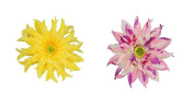 2 Pcs Girl's Big Gerbera Hair Clip and Hair Pin Hat Decoration Flower