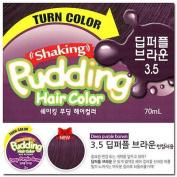 EZN Shaking Pudding Hair Colour Deep Purple Brown 3.5