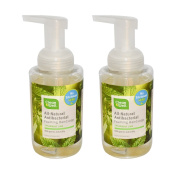 Clean Well All-Natural Antibacterial Foaming Handsoap With Spearmint Lime, 9.5 fl oz (280 ml)