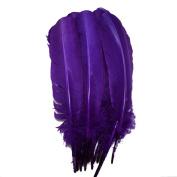 Everyshine 120 Pcs Turkey Quill Feathers 25cm - 30cm Purple