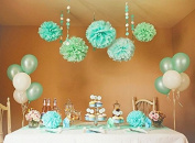 Sorive® 12PCS Mixed Sizes Mint & Light Blue Party Tissue Pom Poms Paper Flower Pompoms Wedding Birthday Party Anniversary Reception Decoration Favour by Sorive