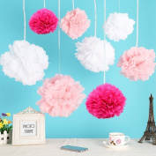 Sorive® Set of 24pcs Tissue Paper Pom-poms Flower Ball 25cm/10inch for Wedding Party Decoration Mix Colour Pink White Rosy