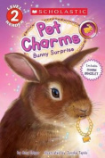 Bunny Surprise (Scholastic Reader, Level 2