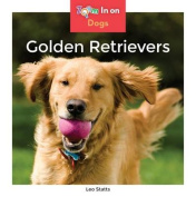 Golden Retrievers (Dogs