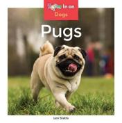 Pugs (Dogs (Abdo Zoom))