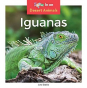 Iguanas (Desert Animals)