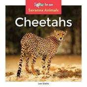 Cheetahs (Savanna Animals)
