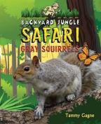 Gray Squirrels