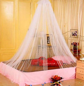 SVI Hot 1pc Elegant Round Lace Insect Bed Canopy Netting Curtain Dome Mosquito Net Worldwide White