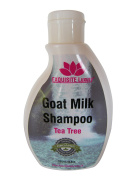 Goat Milk Tea Tree Shampoo Organic (250ml / 8.8oz) EXQUISITE Luxury