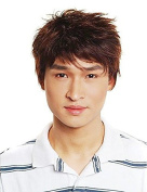 New Capless High Quality Synthetic Short Brown Fluffy Hair Full Wigs for Men