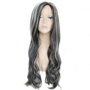 HJL-70cm Long Big Wave Side Bang Female Fashion High Temperature Fibre Synthetic Wig