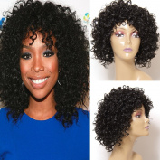 Jolia Hair Fashion Gorgeous Hairstyles Synthetic Short Curly Wavy Full Hair Wigs for Women Natural Look, Jet Black