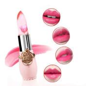 Waterproof Long Lasting Moisturise Lipstick Lip Gloss