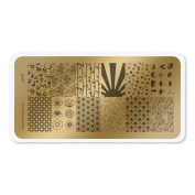 colour CLUB NAIL ART STAMPING PLATE-JAPAN