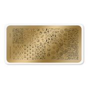 colour CLUB NAIL ART STAMPING PLATE-FOOD