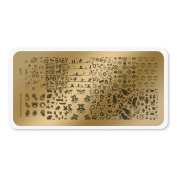colour CLUB NAIL ART STAMPING PLATE-BABY