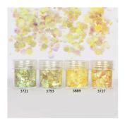 10ml/Box Glitter Powder Tips Lemon Colourful 1mm & 2mm & 3mm Mixed Powder Nail Decoration #3721