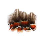 Everyshine Natural Pheasant Feathers 4.8cm - 7.6cm