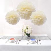 Sorive® 15PCS Mixed Sizes Beige Cream Ivory Tissue Paper Flower Pom Poms Wedding Birthday Party Nursery Decoration - Two Different Sizes