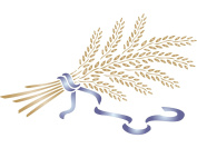 Wheat Sheaf Stencil - (size 33cm w x 20cm h) Reusable Wall Stencils for Painting - Best Quality Vegetable Kitchen Stencil Ideas - Use on Walls, Floors, Fabrics, Glass, Wood, Terracotta, and More...