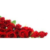 Red Rose (type J Malone)* - 1932 - Candle & Soap Fragrance Oil - 1 Oz (30 ml) - High Performance Supply - Special Promotion.