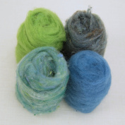 Woolbuddy Wool Spring