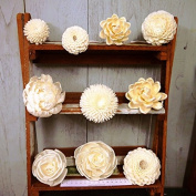 10 Sola Wood Diffuser Flowers with cotton rope, mix of Zinnia, Chrysanthemum, Lotus, Jasmine, Peony Rose, Rose 5-9 cm. Dia