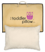 Toddler Pillow and Pillow Bag - 100% Organic Cotton Case - Hypoallergenic - Pillow Made in USA - 33cm x 48cm Perfect Size for Kids Ages 2+ - Great for Home, Daycare and Travel