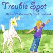 Trouble Spot