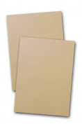 Environment Desert Storm 36kg Card Stock - 25 Pk