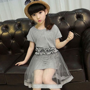 Asbent(TM) New Girls Clothes Kids Vintage Grey Short Sleeve Tulle Lace Dress Kids Party Dresses With Belt YYT277