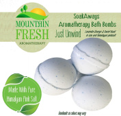 SoakAways Aromatherapy Just Unwind Bath Bomb Pack of 3.