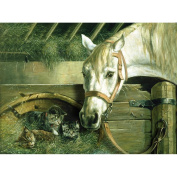 Reeves Paint by Number Artist's Collection, 30cm by 41cm , Horse and Kitten